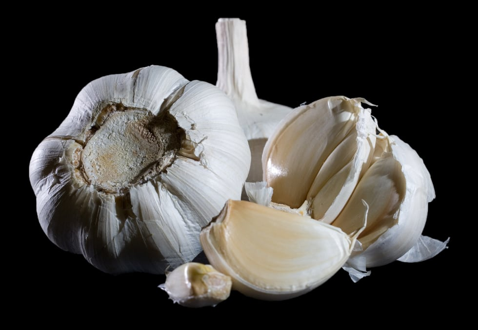 garlic survival food